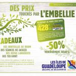 ONT Guadeloupe emailing CTIG mars 09-2